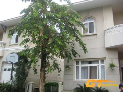 PHU GIA VILLAS FOR SALE, PHU MY HUNG, DISTRICT 7